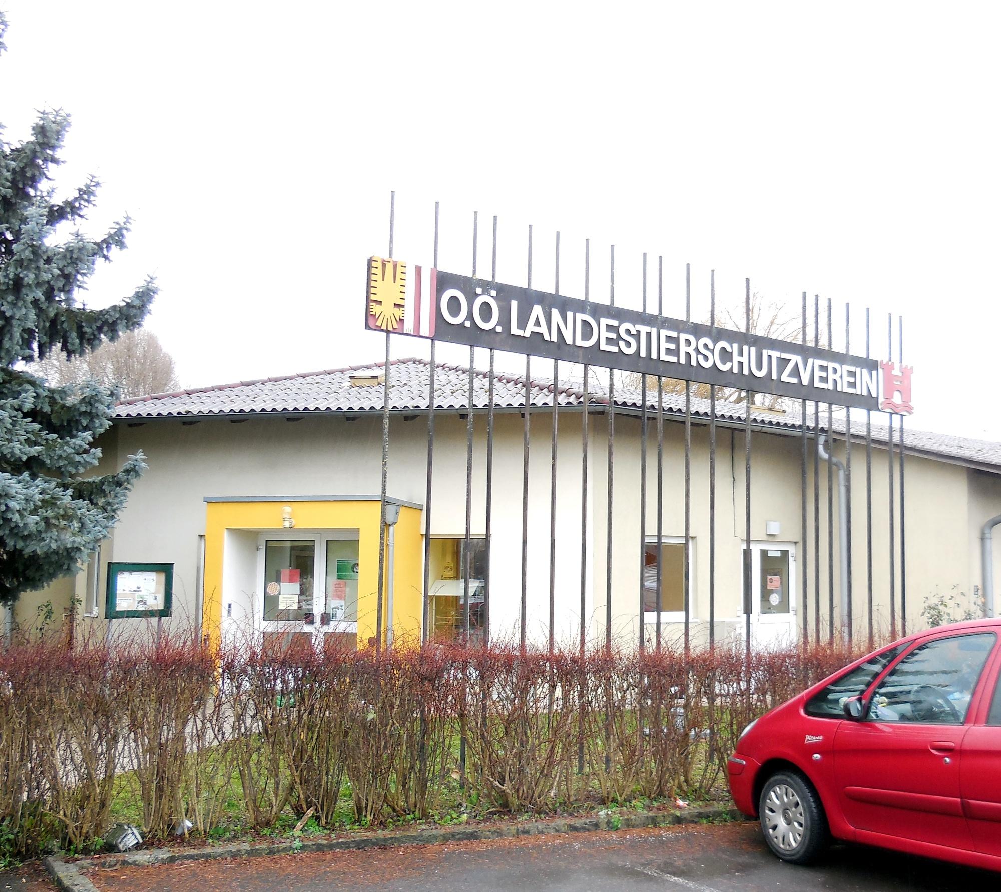 Tierheim Linz